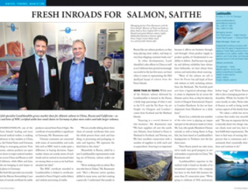 Fresh Inroads for Salmon, Saithe