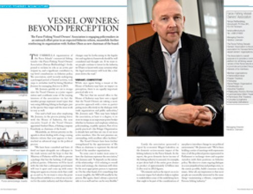 Vessel Owners: Beyond Perception